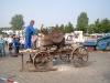 Bauernmarkt_05-08-04_Nr16.jpg