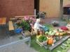 2011_09_25_Marner_Kohltage_29.JPG